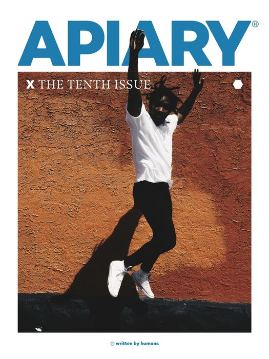 apiary x final cover